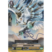 Imperative Owl G-SD02/017EN C