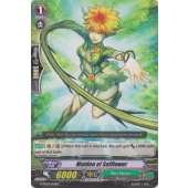 Maiden of Safflower G-TD03/013EN C